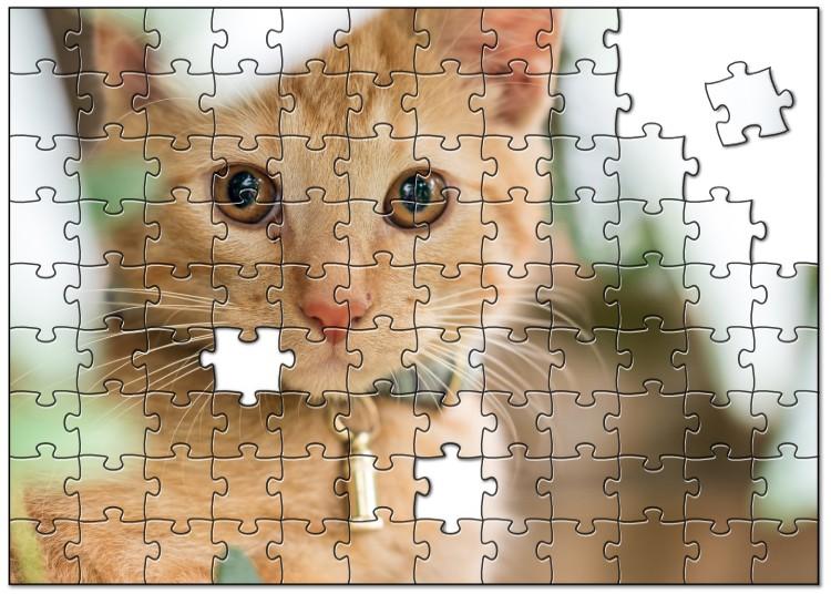 Binky de puzzel