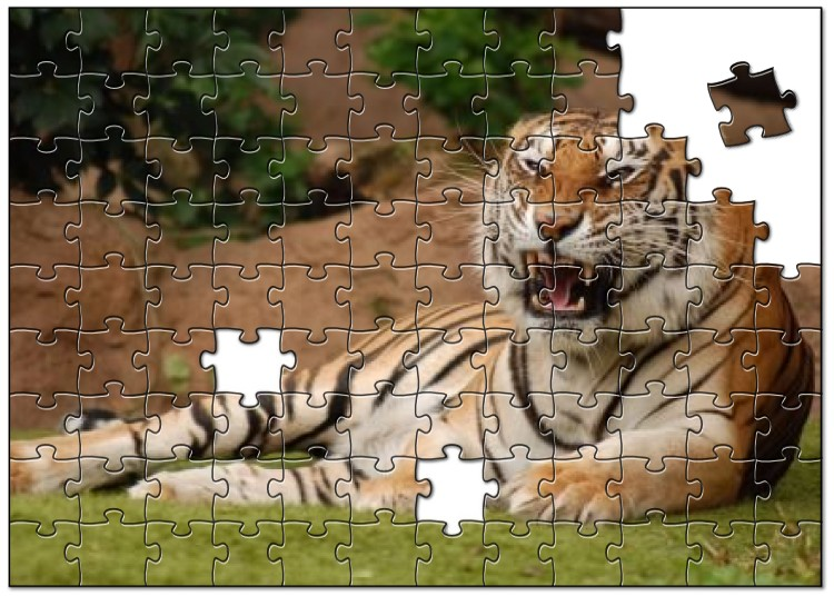 Wildlife jigsaws