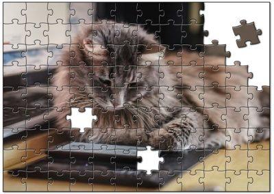 Puzzelende Kat